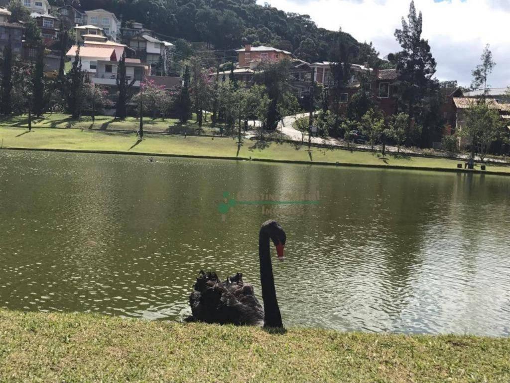 Terreno Residencial à venda em Vargem Grande, Teresópolis - Foto 21
