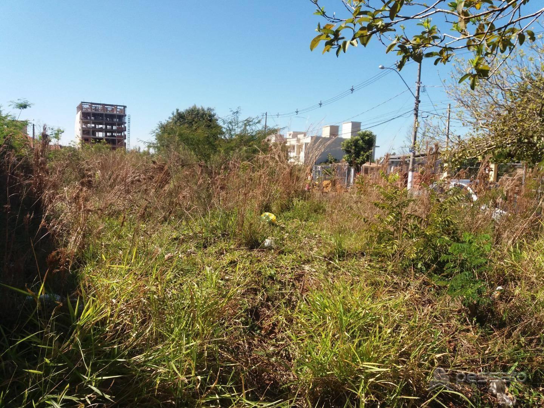 terreno 0 dormitórios em Gravataí, no bairro Oriço