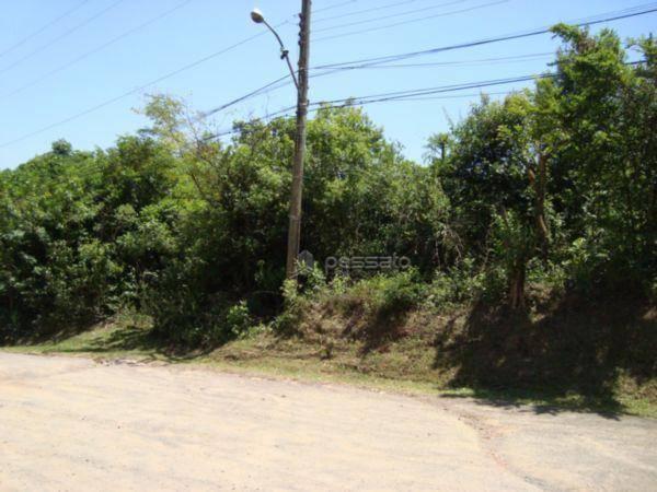 terreno 0 dormitórios em Gravataí, no bairro Passo Das Pedras