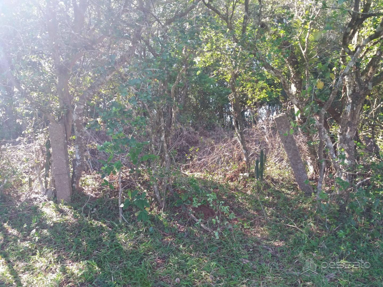 terreno 0 dormitórios em Gravataí, no bairro Itacolomi