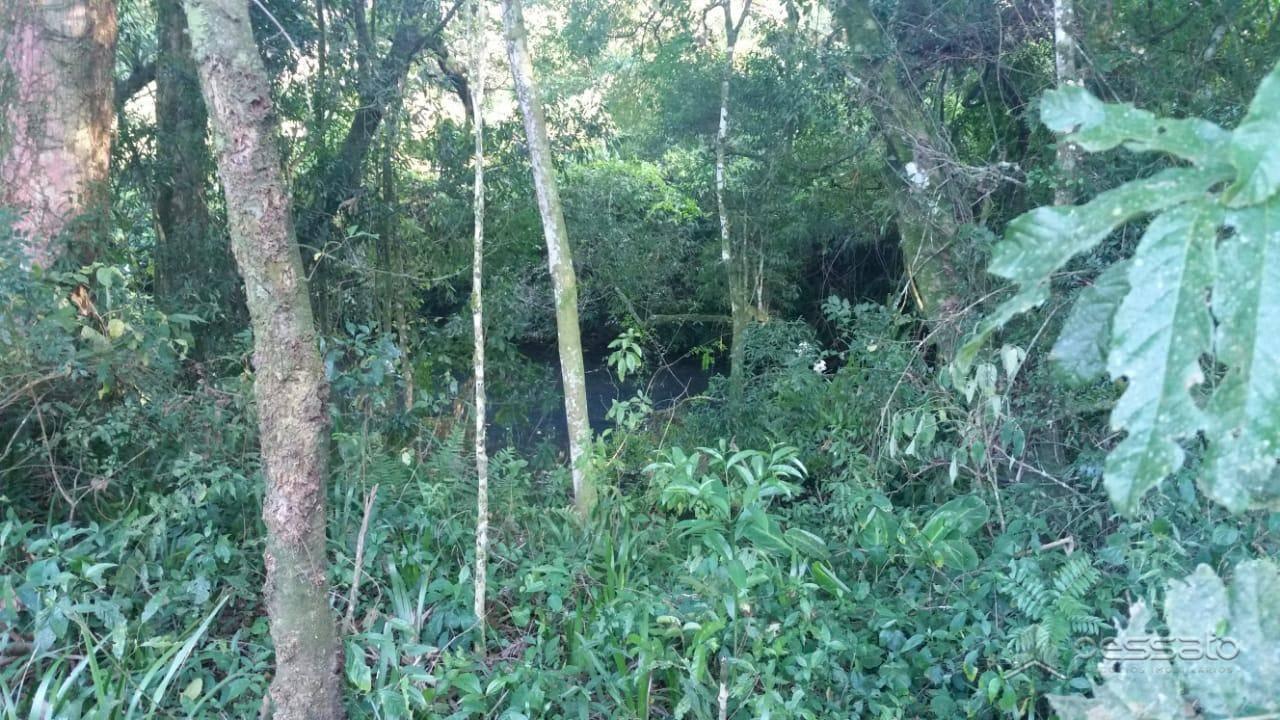 Área 0 dormitórios em Maquiné, no bairro Zona Rural
